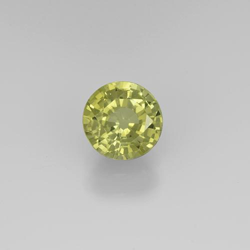 Golden Green Grossularite Garnet Gem - 0.8ct Round Facet (ID: 504855)