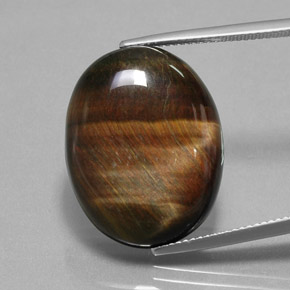 Multicolor Hawk's Eye Gem - 24.7ct Oval Cabochon (ID: 379698)