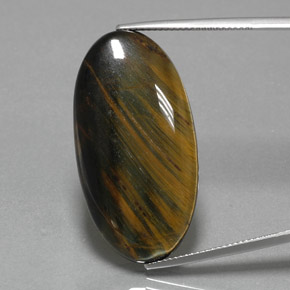 Medium-Dark Brown Hawk's Eye Gem - 31ct Oval Cabochon (ID: 384571)