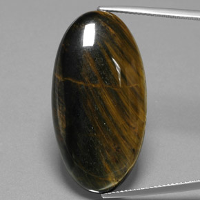 Warm Brown Hawk's Eye Gem - 37.5ct Oval Cabochon (ID: 384683)
