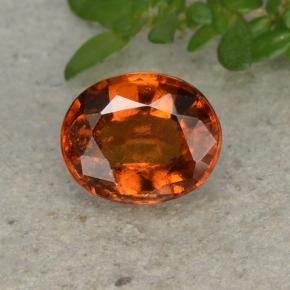 Fire Orange Hessonite Garnet Gem - 1.9ct Oval Facet (ID: 495361)