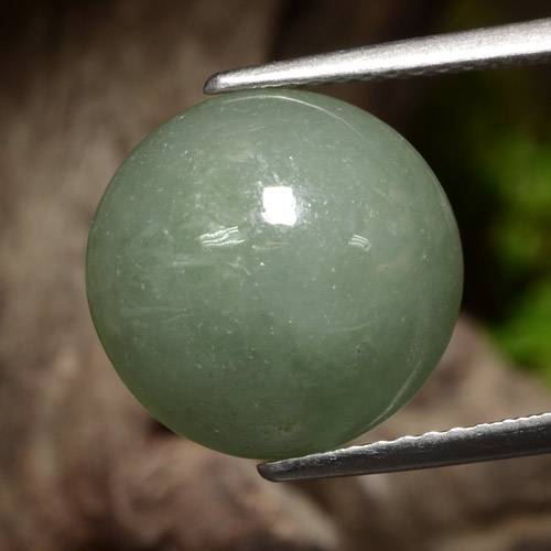 Medium Green Jadéite gemme - 8.1ct Cabochon rond (ID: 470738)