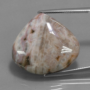 Multicolor Jasper Gem - 32.9ct Pear Cabochon (ID: 348914)