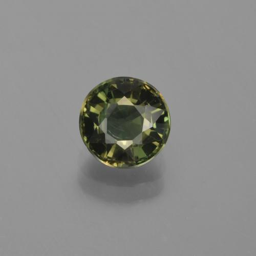 Brownish Green Kornerupine Gem - 1.2ct Round Facet (ID: 453226)
