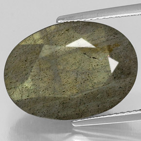 Buy 10.74 ct Multicolor Labradorite 17.86 mm x 13 mm from GemSelect (Product ID: 305789)