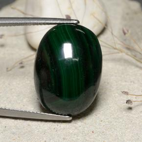 Forest Green Malachite Gem - 29.5ct Oval Cabochon (ID: 482221)
