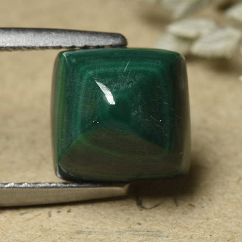 Pine Green Malachite Gem - 6.8ct Square Sugarloaf Cabochon (ID: 493459)