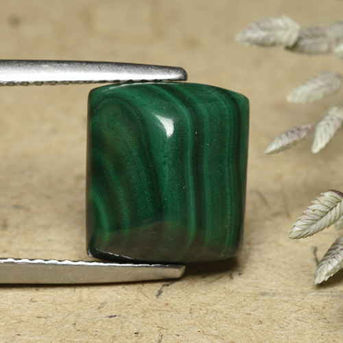 Medium Green Malachite Gem - 8.8ct Baguette Sugarloaf Cabochon (ID: 493467)