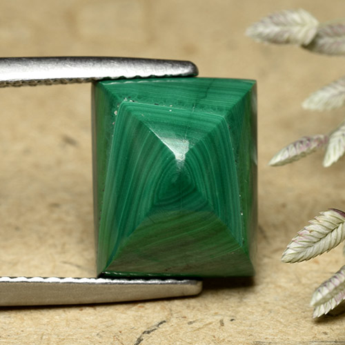 Multicolor Green Malachite Gem - 8.4ct Baguette Sugarloaf Cabochon (ID: 493470)