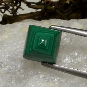thumb image of 6.1ct Square Sugarloaf Cabochon Multicolor Green Malachite (ID: 494262)