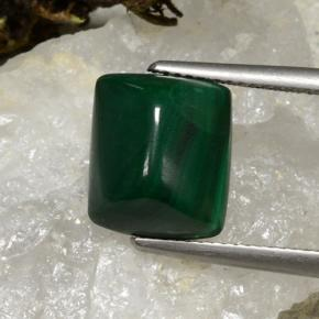Multicolor Green Malachite Gem - 8.3ct Cushion Shape Sugarloaf Cabochon (ID: 494269)