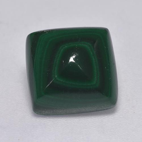 Medium Green Malachite Gem - 4.8ct Square Cabochon (ID: 526088)