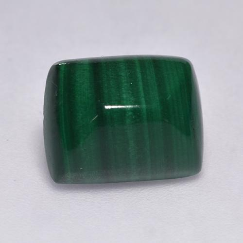 Medium Green Malachite Gem - 4.3ct Cushion Cabochon (ID: 526094)