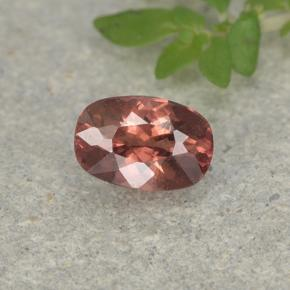 Orange Pink Malaya Garnet Gem - 0.6ct Cushion-Cut (ID: 498925)