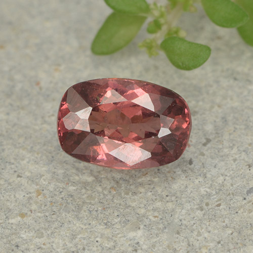 Pinkish Rose Malaya Garnet Gem - 0.6ct Cushion-Cut (ID: 498933)