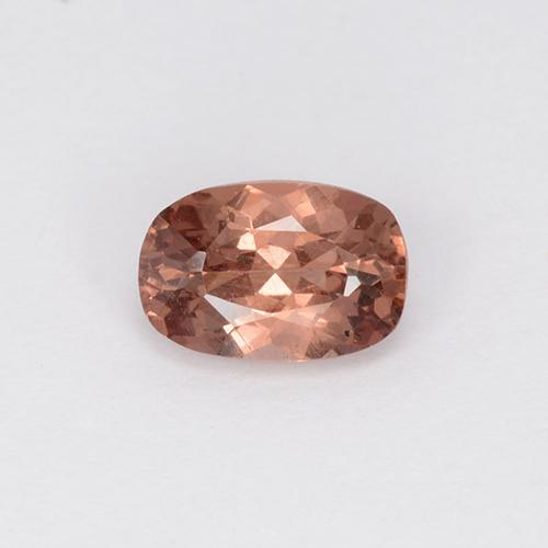 Rose Malaya Garnet Gem - 0.6ct Cushion-Cut (ID: 505076)