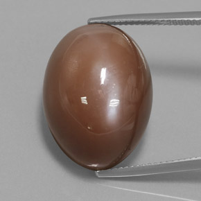 Mocha Moonstone Gem - 31.3ct Oval Cabochon (ID: 359770)