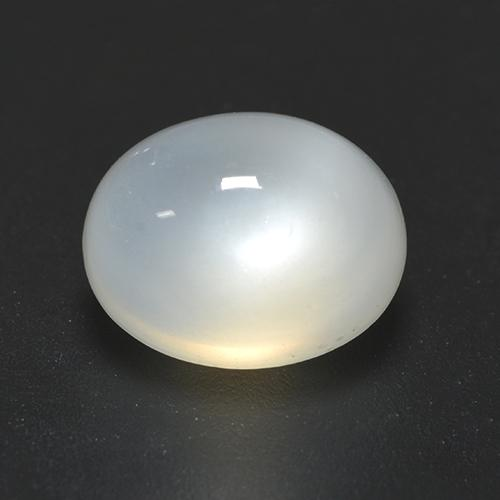 Translucent White Moonstone Gem - 2.5ct Oval Cabochon (ID: 528203)