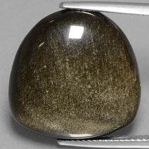 Black Gold Sheen Obsidian Gem - 17.6ct Fancy Cabochon (ID: 433936)