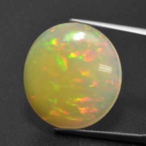 thumb image of 13.7ct Oval Cabochon Multicolor Opal (ID: 462136)