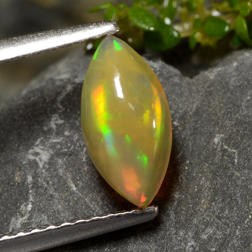 Multicolor Opal Gem - 0.7ct Marquise Cabochon (ID: 478622)