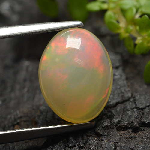 Multicolor Opal Gem - 1.7ct Oval Cabochon (ID: 498286)