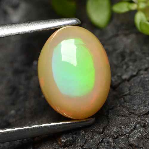 1.9ct Ovale Cabochon Multicolore Opale gemme (ID: 498287)