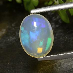 1.4ct Oval Cabochon Multicolor Opal Gem (ID: 498905)