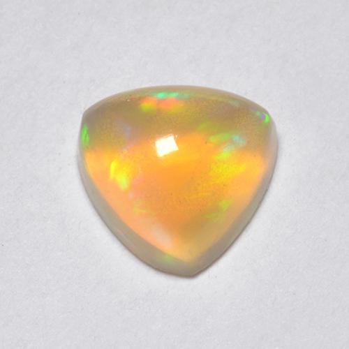 Multicolor Opal Gem - 0.6ct Trillion Cabochon (ID: 519556)