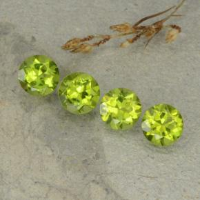 Lively Green Peridot Gem - 1.4ct Round Facet (ID: 480506)