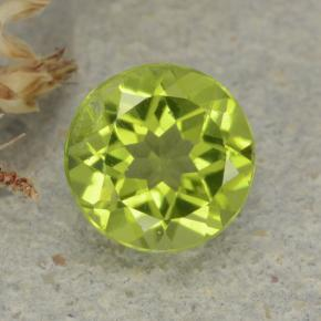 Medium Green Peridoto Gem - 1.2ct Sfaccettatura rotonda (ID: 480954)