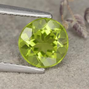 Lively Green Peridot Gem - 1.3ct Round Facet (ID: 481008)