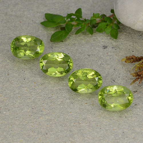 Lively Green Peridot Gem - 1.3ct Oval Facet (ID: 484289)