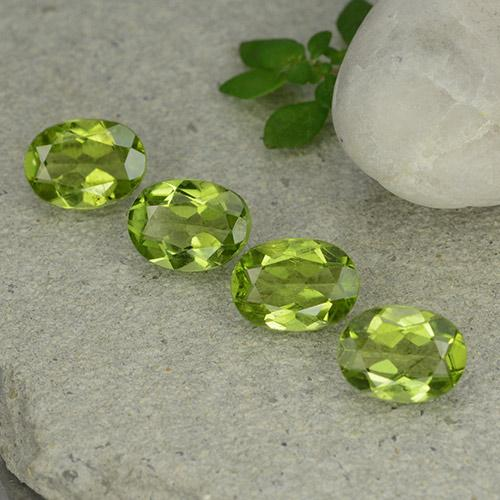 Lively Green Peridot Gem - 1.2ct Oval Facet (ID: 484340)