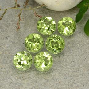 Lively Green Peridot Gem - 0.5ct Round Facet (ID: 489144)