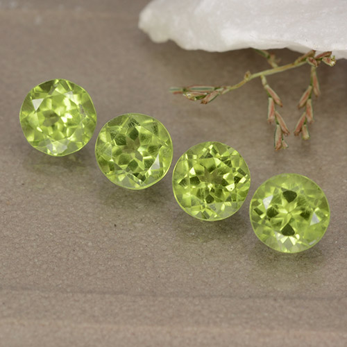 Lively Green Peridot Gem - 0.5ct Round Facet (ID: 489159)