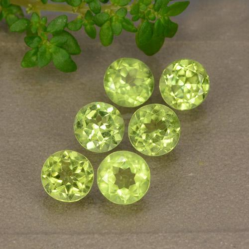 Lively Green Peridot Gem - 0.5ct Round Facet (ID: 489355)