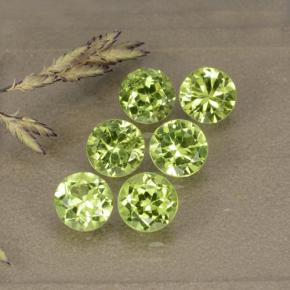 Medium Green Peridoto Gem - 0.5ct Sfaccettatura rotonda (ID: 489356)