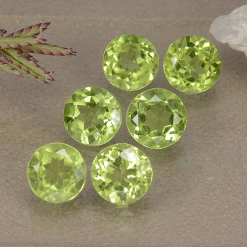 Lively Green Peridot Gem - 0.5ct Round Facet (ID: 489419)