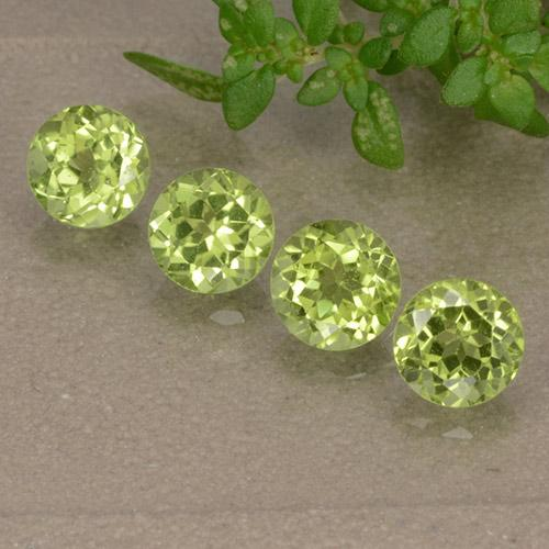 Lively Green Peridot Gem - 0.5ct Round Facet (ID: 489659)