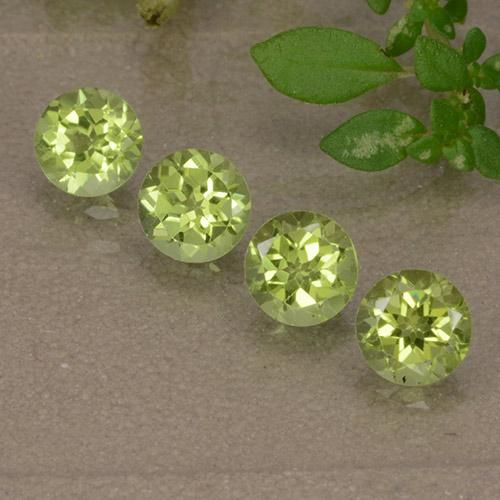 Light Lively Green 橄榄石 Gem - 0.4ct 圆形切面 (ID: 489663)