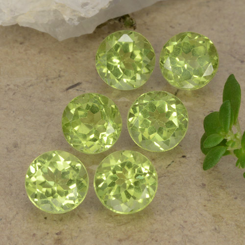 Lively Green Peridot Gem - 0.5ct Round Facet (ID: 489737)