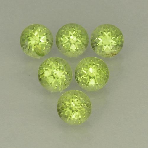 Lively Green Peridot Gem - 0.3ct Round Facet (ID: 499812)