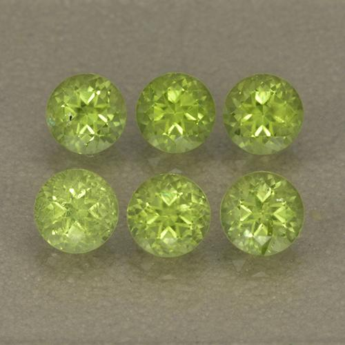 Lively Green Peridot Gem - 0.3ct Round Facet (ID: 499990)