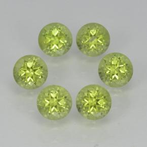 Lively Green Peridot Gem - 0.3ct Round Facet (ID: 500056)