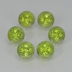 Lively Green Peridot Gem - 0.3ct Round Facet (ID: 500059)