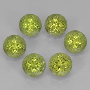 Lively Green Peridot Gem - 0.3ct Round Facet (ID: 500152)