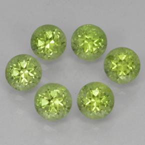 Lively Green Peridot Gem - 0.3ct Round Facet (ID: 500161)