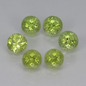 Lively Green Peridot Gem - 0.3ct Round Facet (ID: 500392)