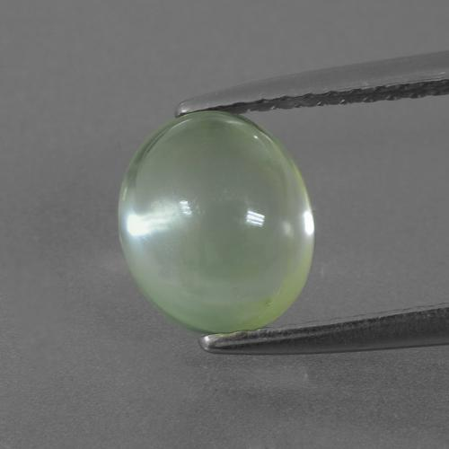Light Pear Green Prehnite Gem - 2.3ct Oval Cabochon (ID: 407495)